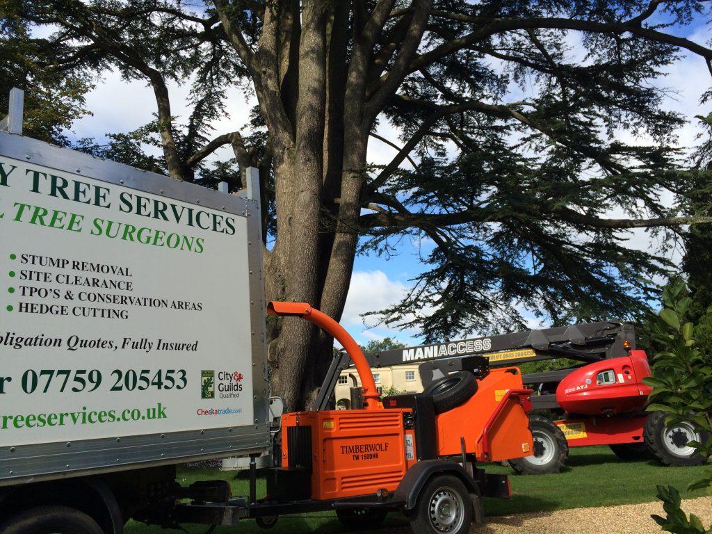 Trowbridge Tree Care