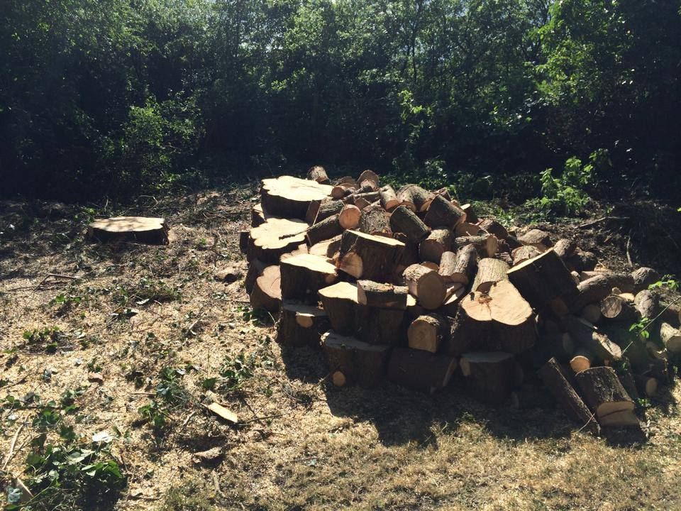 Firewood for sale Somerset