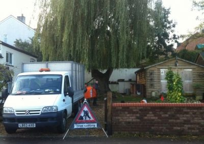 Tree cutting Bath